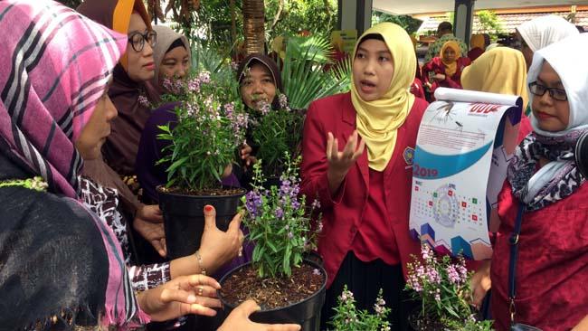Puluhan Mahasiswa FIK UM Surabaya Tanam Bunga Lavender di Kampung, Minimalisir Wabah DBD