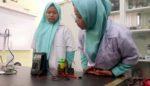 Pelajar SMP SMA Progresif Sarat Prestasi, Mampu Produksi Baterai Berbahan Kulit Pisang Lolos ISIC Malaysia